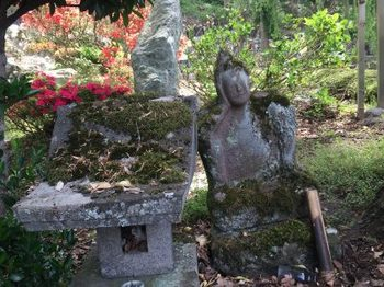 石像admin-ajax.jpg